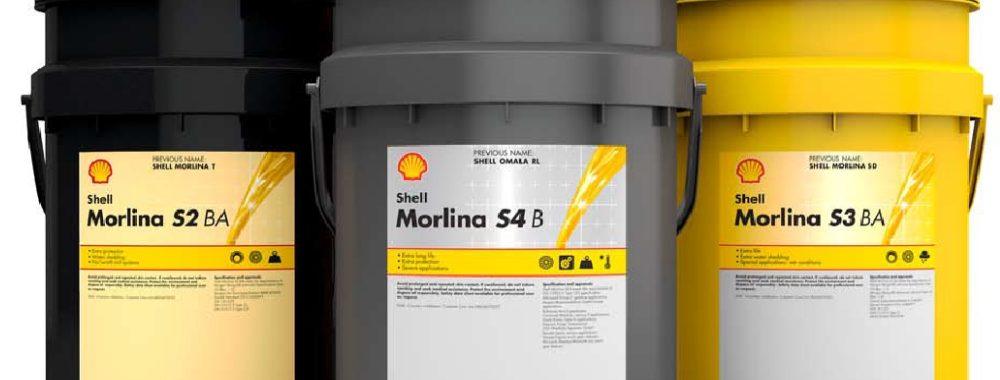 Shell Morlina